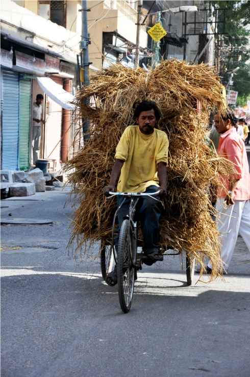 Delivery bike in India
